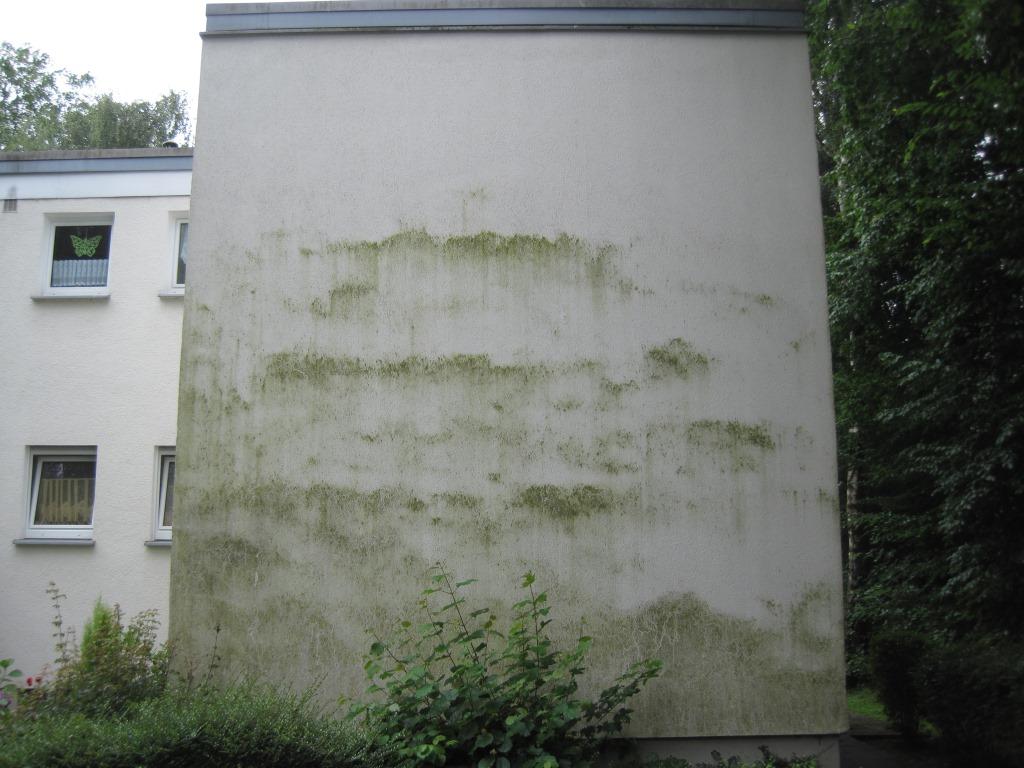 ako vyčistiť fasádu domu
